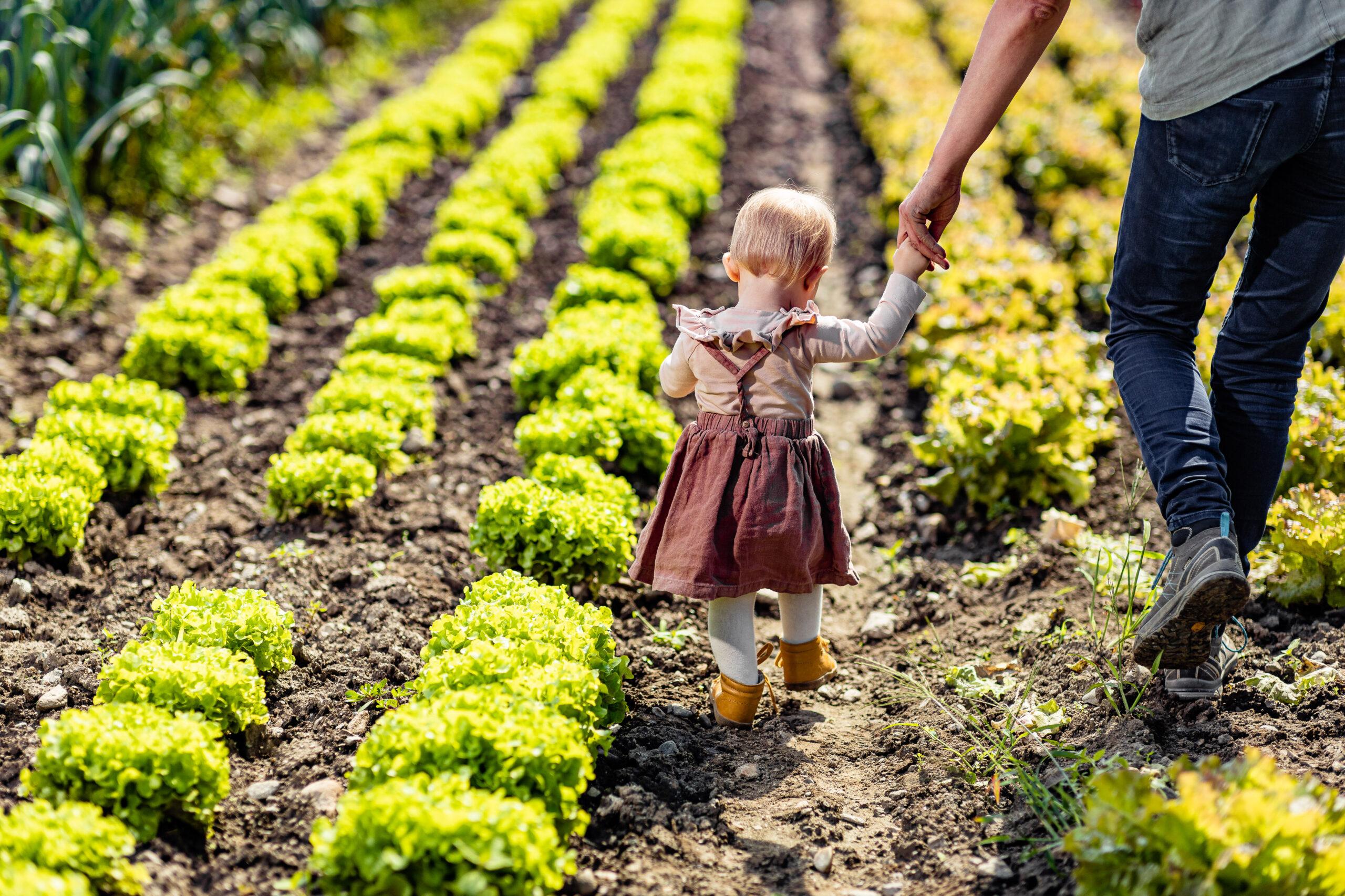 Cosa significa agricoltura per il futuro